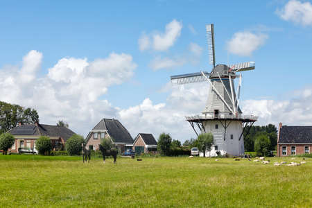 charming Dutch windmill and horses on pasture, over blue sky