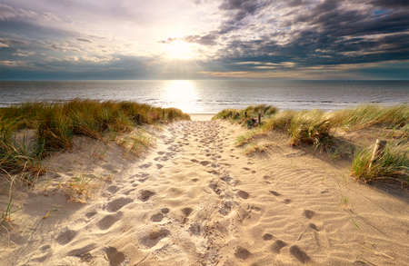 sunshine over sand path to North sea beach in summer