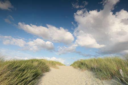 sand path on dune over blue sky on sunny day Banco de Imagens