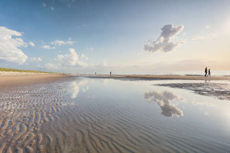 people silhouettes on North sea beach at low tide, Holland