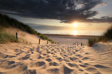 sand path to sea beach in summer at sunset, Netherlands