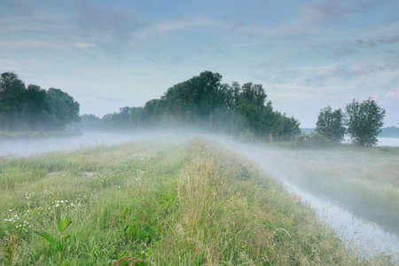serene misty morning over river and meadows Banco de Imagens