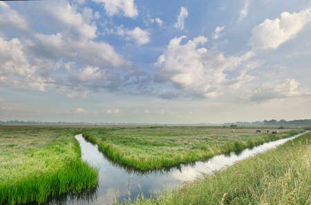 green pastures , beautiful sky and river in summer Reklamní fotografie