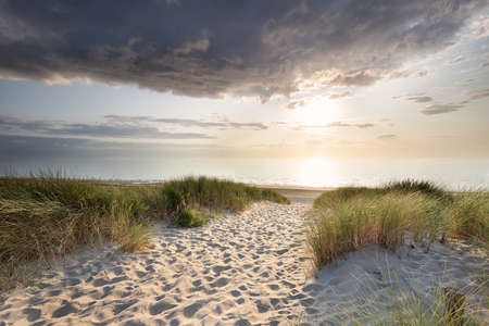 sand path to north sea beach at summer sunset Banco de Imagens
