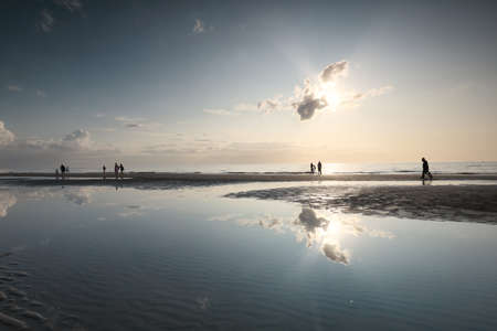people silhouettes on sea sand beach in sunshine during summer