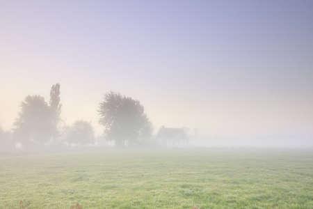 farmhouse in dense fog at sunrise, Netherlands