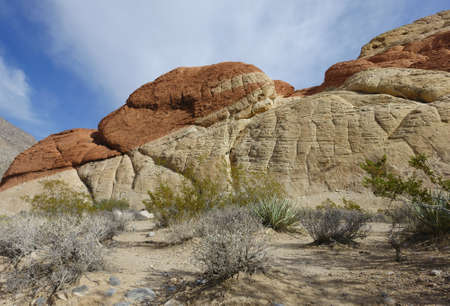 rock canyon: Red Rock canyon landscape, Nevada, USA