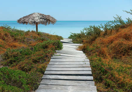wooden path and beach