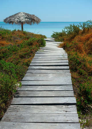 wooden path and beach Stock Photo - 65522970