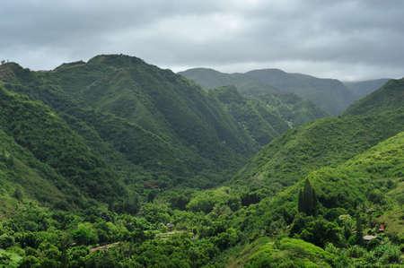 Green tropical valley of Maui, Hawaii Imagens