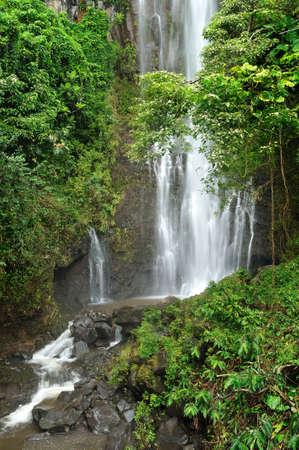 Tropical rain forest waterfall on the road to Hana, Maui, Hawaii Imagens