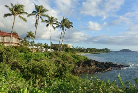 rocky coastline: Maui rocky coastline with luxury condos and hotels
