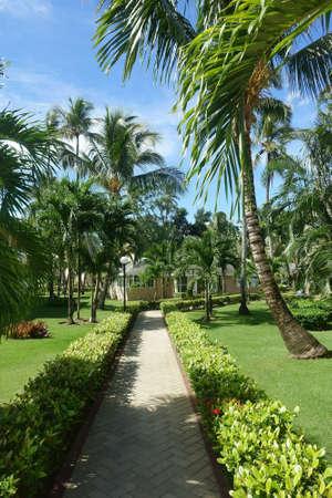 Sidewalk or garden path on a tropical resort