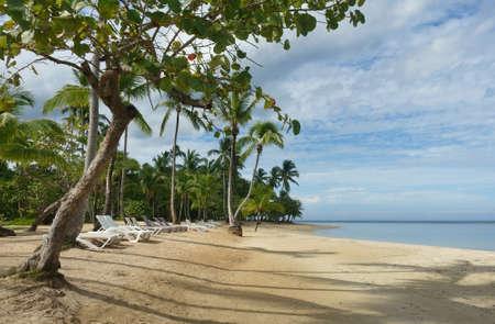 Beautiful tropical beach with palm trees, Samana, Dominican Republic