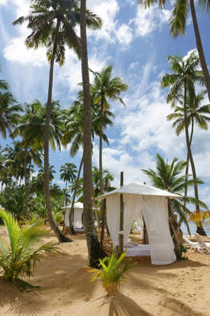 Beach hut on a tropical beach with palm trees Imagens