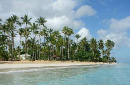 Beautiful natural beach, Samana, Dominican Republic