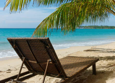 Beach chair or sunbed under a palm tree Imagens