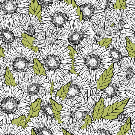 Vector seamless gerbera Daisy pattern. Graphic hand drawing black line, realistic style. Floral Botanical illustration. Retro style. Design for textiles, packaging, Wallpaper. Coloring Illustration
