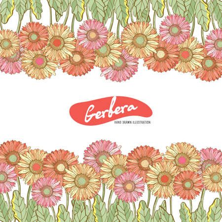 Floral horizontal postcard design with flowers by Gerber Daisy. Floral vector background. Horizontal flowers banner on white background. With space for text. Greeting card Иллюстрация