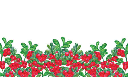 Horizontal banners template with cranberries by hand on a white background and place for text. Natural realistic watercolor illustration for sale or advertising. Frame wild berries.