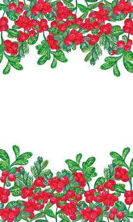 Floral patterns with red cowberry berries. Horizontal endless brush set with growing plants and wild berries. For romantic and summer design, ads, greeting cards, posters, advertising.