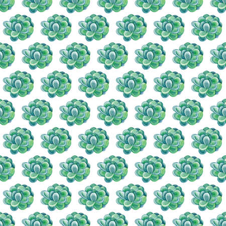 Watercolor green succulents seamless pattern. Seamless texture with objects: plants, succulent. Hand painted vintage gardening background. Hand drawn succulentus. Perfect for your project, wedding