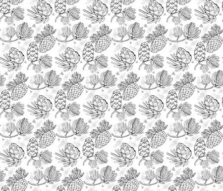 Seamless vector pattern with pine cones, conifer cones and cedar. Hand drawn vector black and white illustration. Forest vintage style. Design elements for card holiday decor.