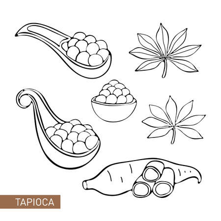 Set Bubble Tea, Pearl milk tea, black and white pearls. Taiwanese drink. Tapioca. Isolated object on white background in vector. Icon tea drink. Manihot leaves and tubers. Black and white line. Doodle