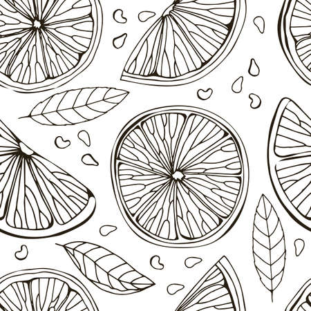Seamless pattern of lemon, itrus, lime. Isolated on white background. Tropical summer fruit. Detailed citrus drawing Great for tea, juice, natural cosmetics. Black sketch. Hand drawn