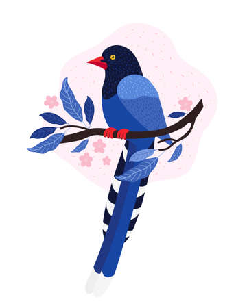 Taiwan azure magpie. Animals Of Taiwan. Urocissa caerulea. Cute Blue bird sits on a branch with pink tropical flowers. Exotic bird of Asia. Hand drawn vector illustration in Scandinavian style.