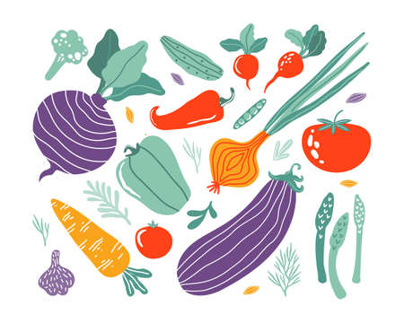 Set with hand drawn colorful doodle vegetables in trendy organic style. Vegetables flat icons cucumber, carrot, onion, tomato, beetroot, broccoli, pepper. Vegetarian healthy food. Farm products