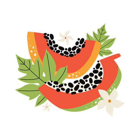 Juicy orange papaya with leaves and flowers. Hand drawn slice of tropical fruit with flesh and seeds. Vector flat illustration on a white background. Dietary vegan food, organic. Doodle jungle fruits Illusztráció