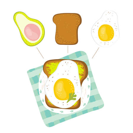 Infographic healthy diet sandwich for breakfast. Sandwich ingredients - avocado, toast, fried egg, greens. Breakfast recipe. Dietary keto food. Hand drawn vector illustration in cartoon style.