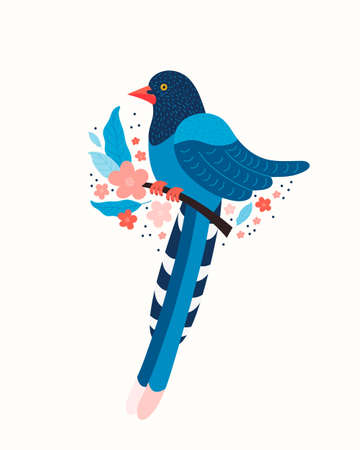 Taiwan blue magpie. Symbol of Taiwan Urocissa caerulea. Exotic birds of Taiwan, China and of Asia. Blue cartoon bird and pink sakura blossoms. Hand drawn vector flat illustration in Scandinavian style
