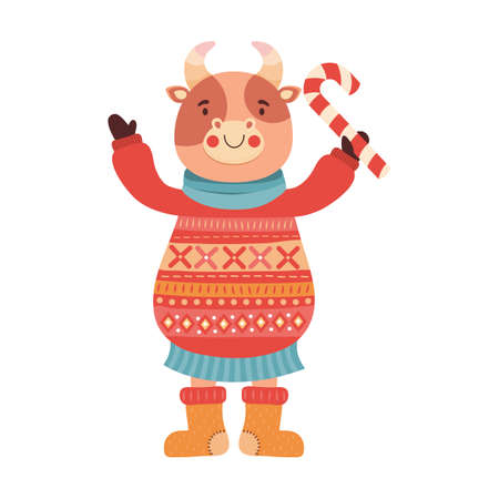 Funny cartoon baby bull with candy cane. Symbol of the new year 2021. Cute ox in a knitted warm sweater, felt boots and a scarf. Animal character cow, Buffalo, calf. Hand drawn Christmas illustration.