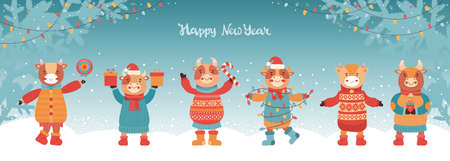 Festive new year or Christmas horizontal banner. Funny bulls in winter clothes and Santa hat. Mascot of the new year 2021 ox. Winter background with fir branches and garlands with glowing light bulbs