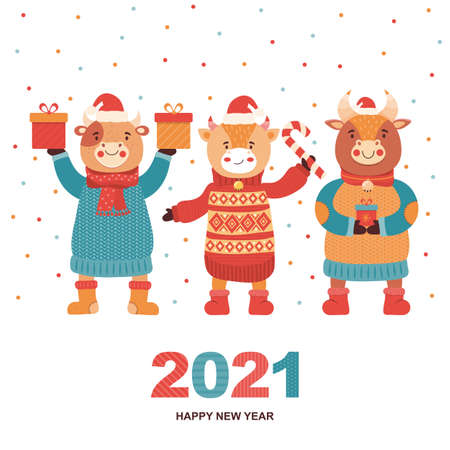 Christmas and Happy New Year banner or card. Funny cartoon bulls with gifts and sweets on the background of colorful confetti. Symbol 2021 year ox. Animal character cow. Festive vector illustration 向量圖像