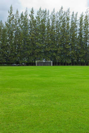 soccer field grass Goal at the stadium Soccer field with white 免版税图像 - 23018616