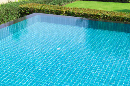 Swimming pool and a garden on the side 免版税图像
