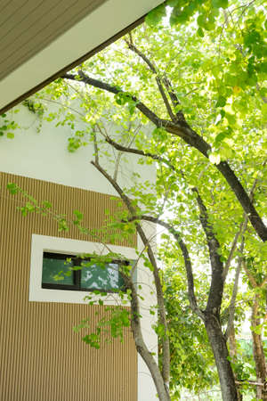 Relax beside the tree 免版税图像