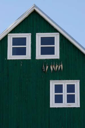 緑の壁に掛かっている乾燥の魚の写真