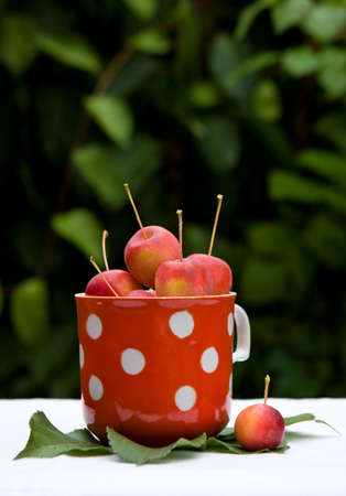 Little red apples in the cup Stock Photo