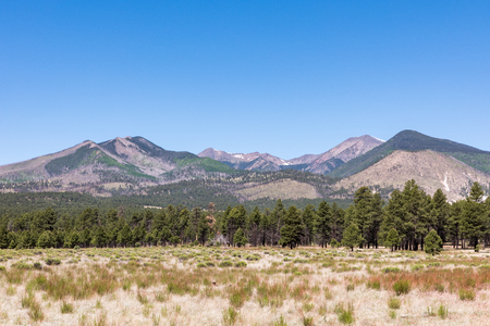 Panorama of the San Francisco Peaks near Flagstaff in Arizona. Seen from Sunset Crater Volcano National Monument. Stock Photo