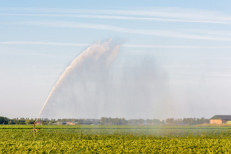 A sprinkler is spraying farmland in the Netherlands during a period of extreme drought in the summer of 2018.