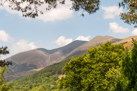 A view of the Skiddaw Mountain Range in the Lake District National Park, Cumbria, England, framed by the trees in spring and all the summits visible.