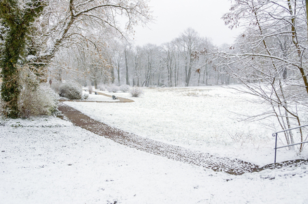 Winter scene with a path through the snow in a landscape park during winter. The grassland and surrounding trees are covered with snow.