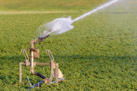 A sprinkler is spraying water on agricultural farmland during a period of drought.
