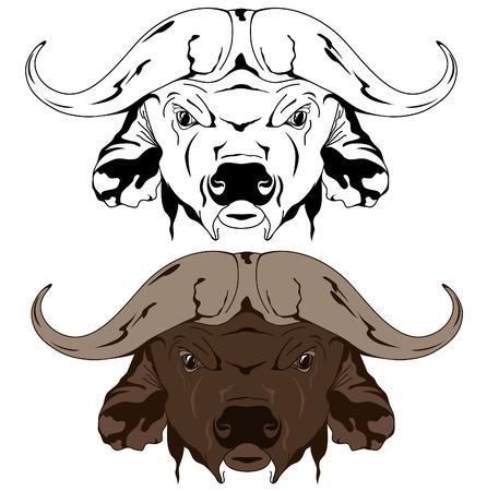 bull horn: buffalo head vector illustration