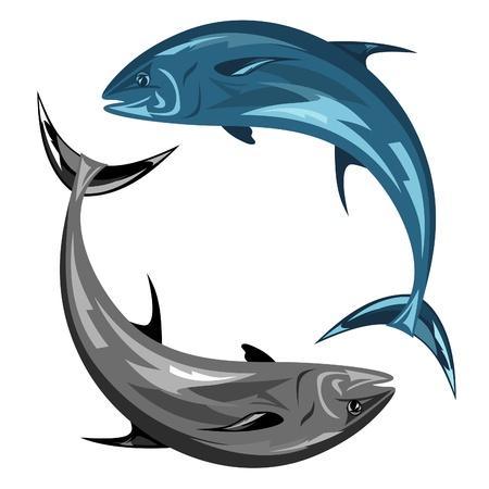 atun: ilustración vectorial de atún Vectores