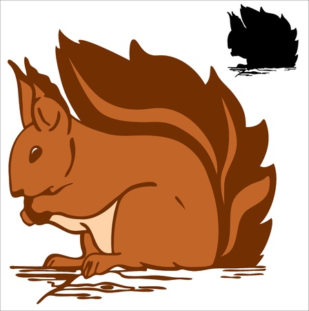 funny red squirrel vector illustration Vector